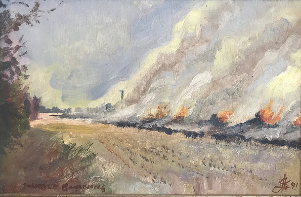 muted painting of field burning