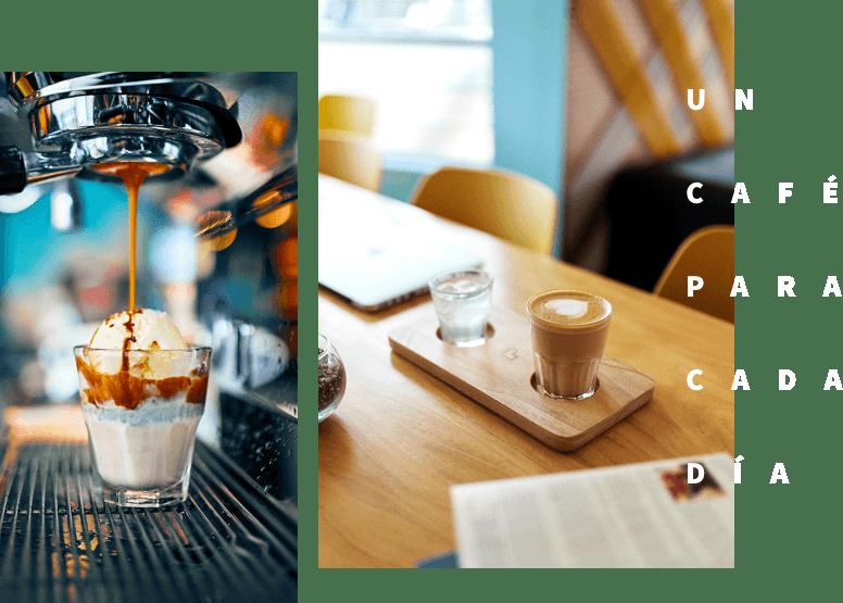 Lote 53 Coffee