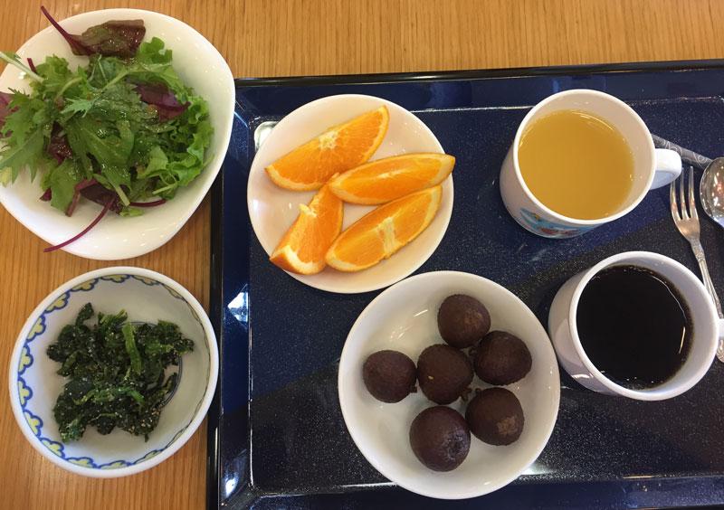 okunoshima island hotel vegan food