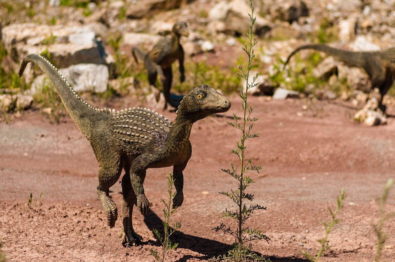 As 5 maiores extinções