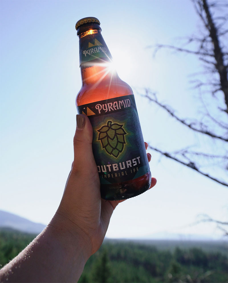 Bottle of Outburst IPA held up in front of the sun