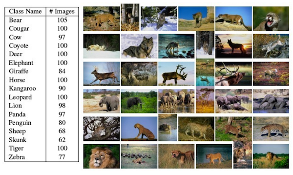 Overview of the the KTH-Animals dataset