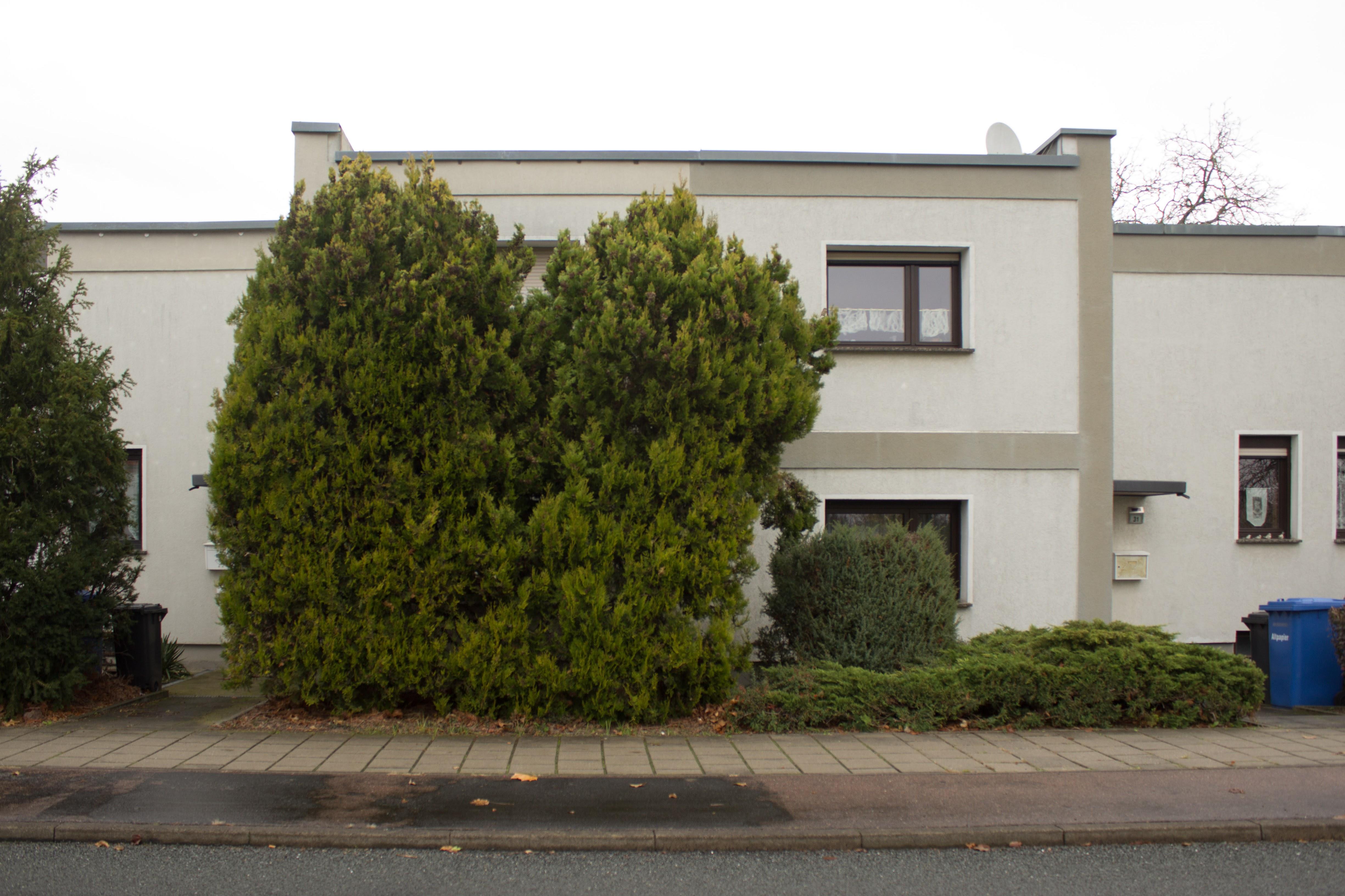 Dessau House 3