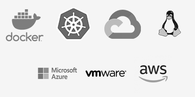 Docker, Kubernetes, Google Cloud Platform, Linux, Microsoft Azure, VMWare, AWS
