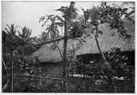 Jules Agostini's 1896 photograph of Gauguin's house in Puna'auia. Note the sculpture of a nude woman.