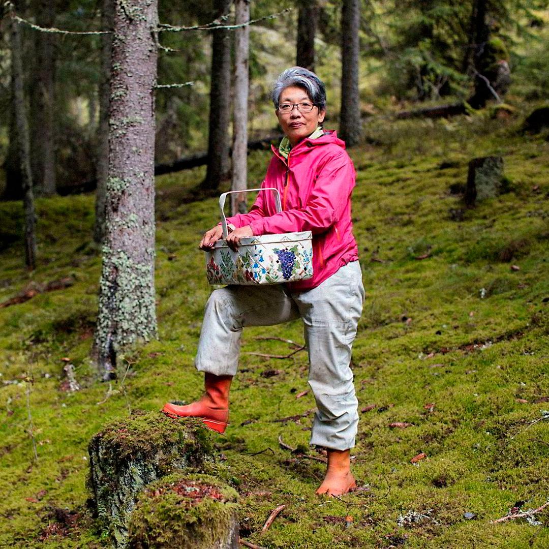 Лонг Литт Вун влесу вЭстмарке, вокрестностях Осло. Фото: Øystein Klock. Источник: dn.no/smak