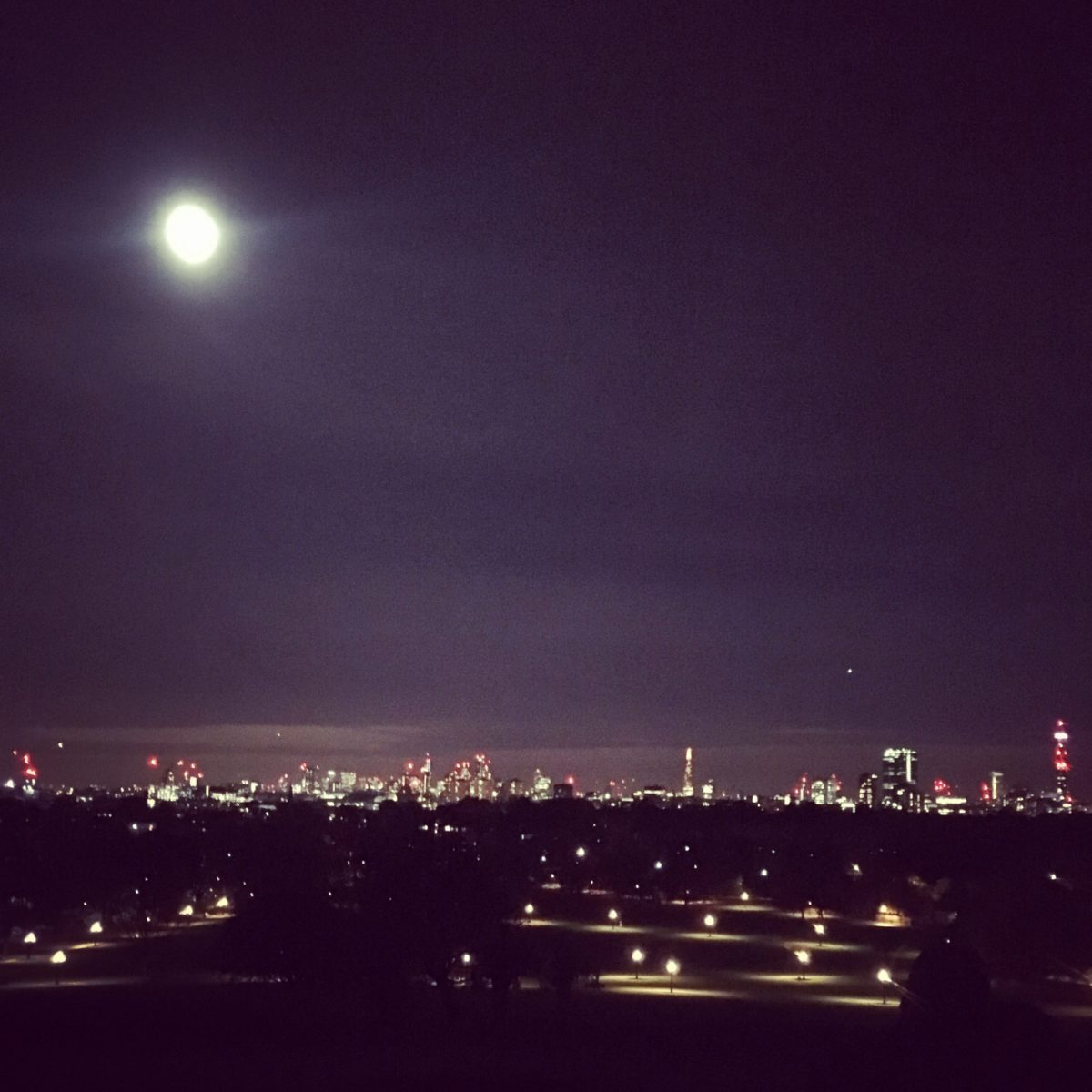 View from Primrose Hill at night