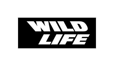 Company wildlife studios