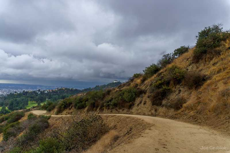Empty trail in Griffith Park during rain storm