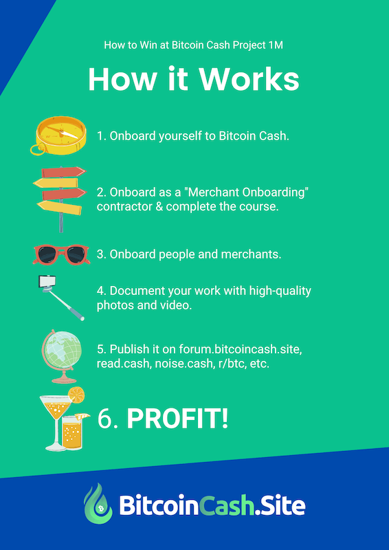 How Project 1M Works
