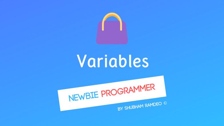 Variables a handbag to store data!
