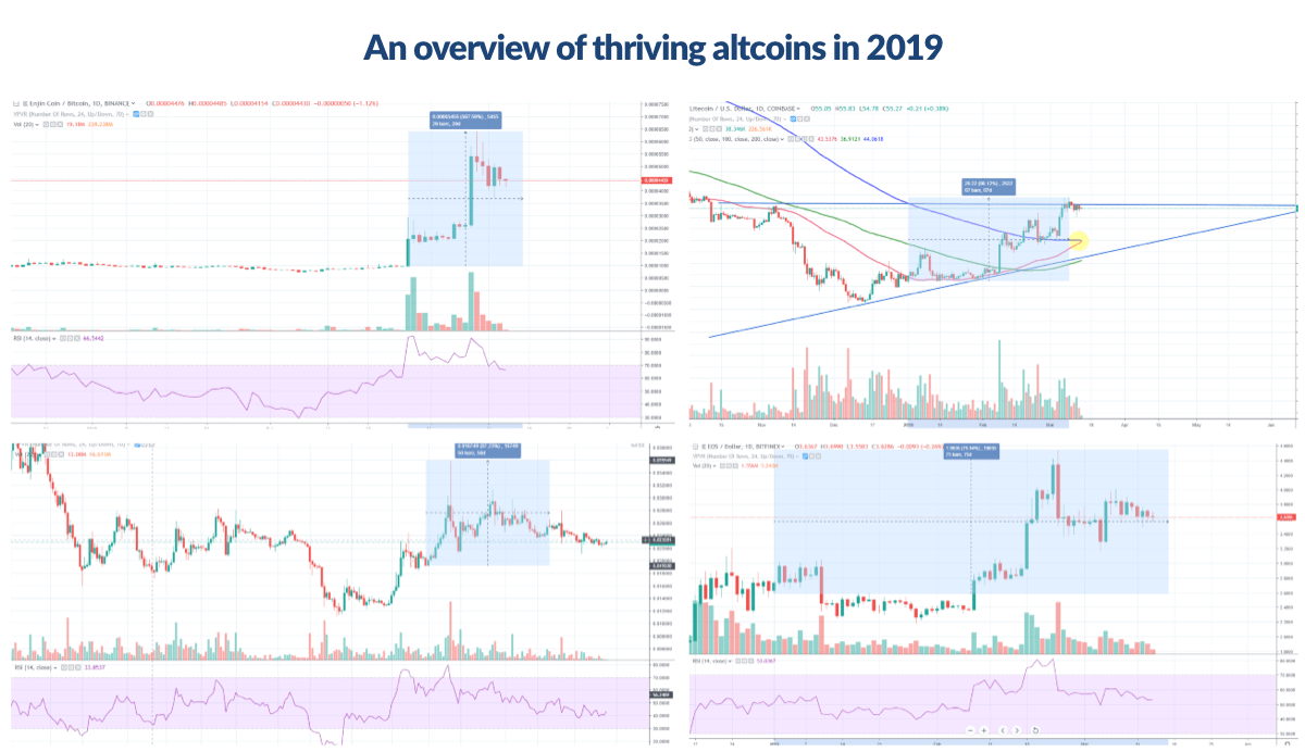A look at thriving altcoins in 2019