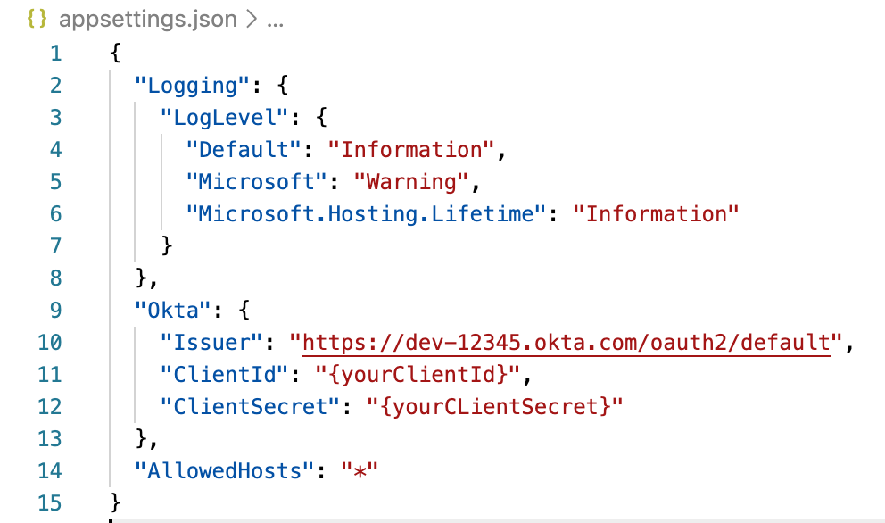 screenshot of appsettings.json
