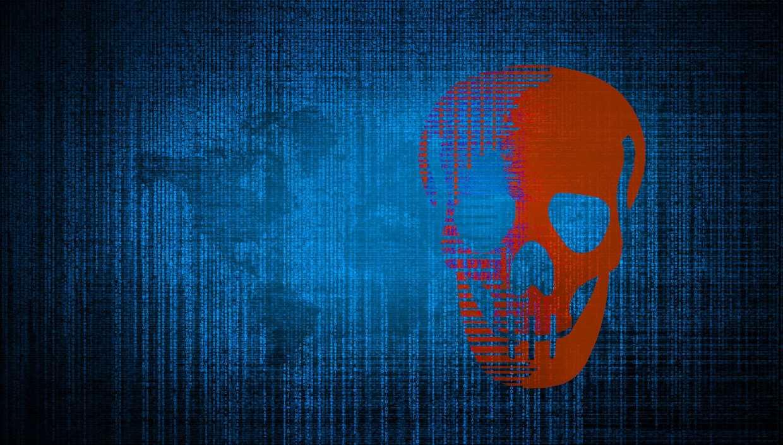 Despre piraterie, bun simț și alte căcaturi cover image