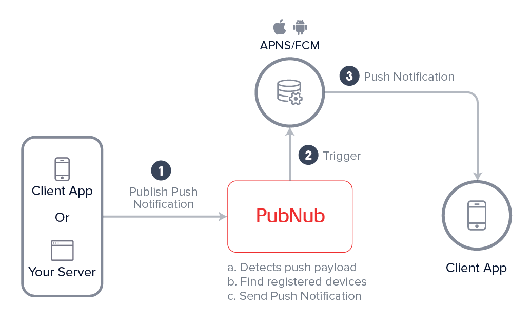 Push Notification Delivery