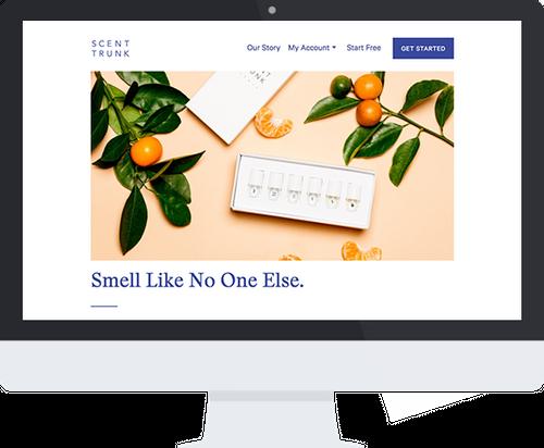 Platform for Designing Uniquely Personalized Fragrances Case Study