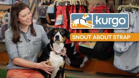 How to Use the Snout About Strap (VIDEO)