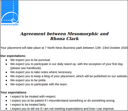 A list of the expectations from Mesomorphic and Rhona for her work experience placement.