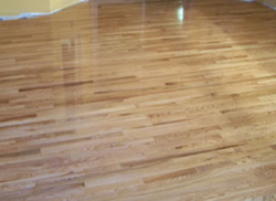 Shiny Hardwood Floor