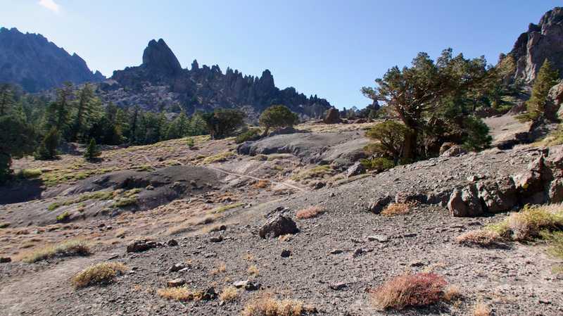 A view of Reynolds Peak
