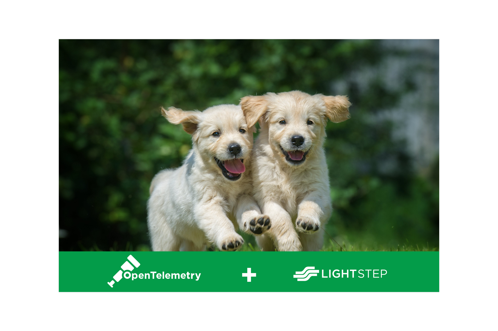 OpenTelemetry and Lightstep: Better Together