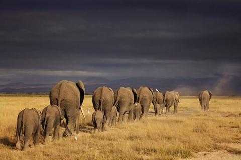 Top 10 Misconceptions around Migrating Hadoop to the Cloud