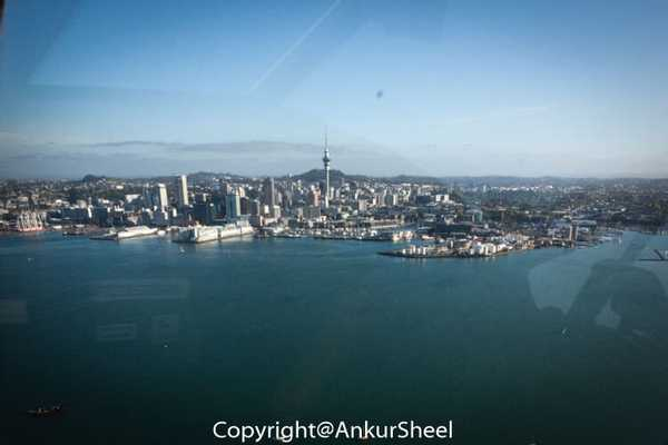 Auckland_Seaplanes-10