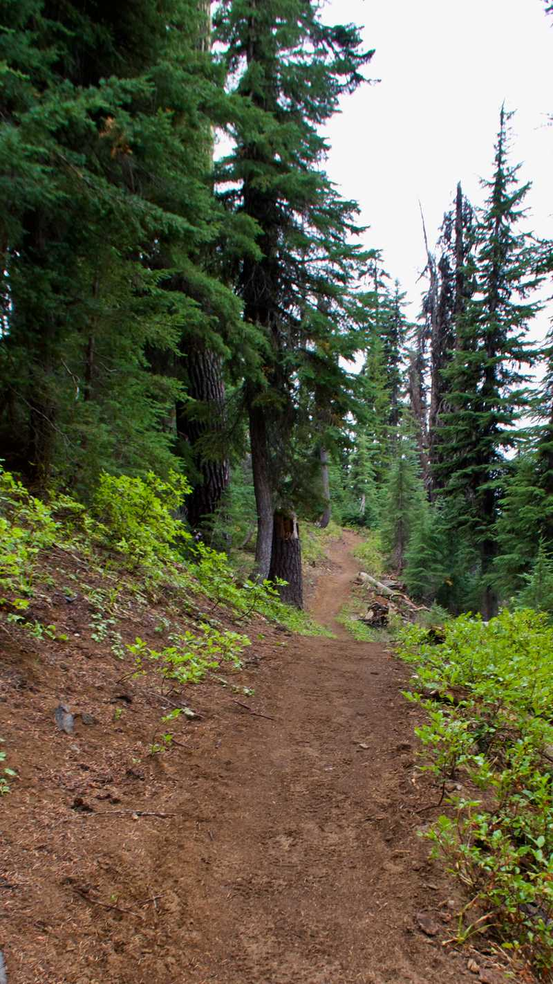Ups and downs on the rim trail