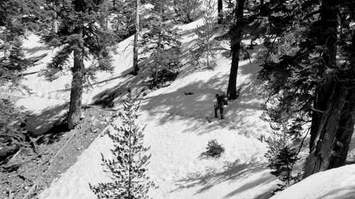 Tengo Hambre crossing snow