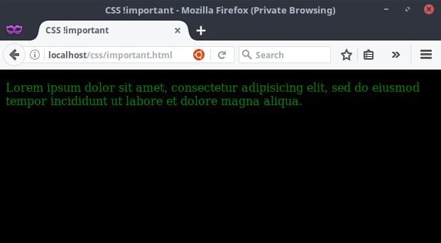 Hasil Kode CSS menggunakan !important
