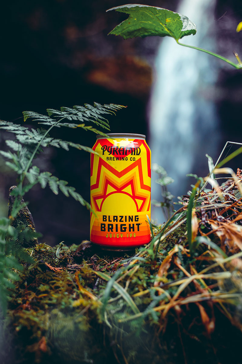Craft Beer IPA in forest scene with waterfall and moss