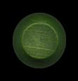 Flavor Cap Green Pepper
