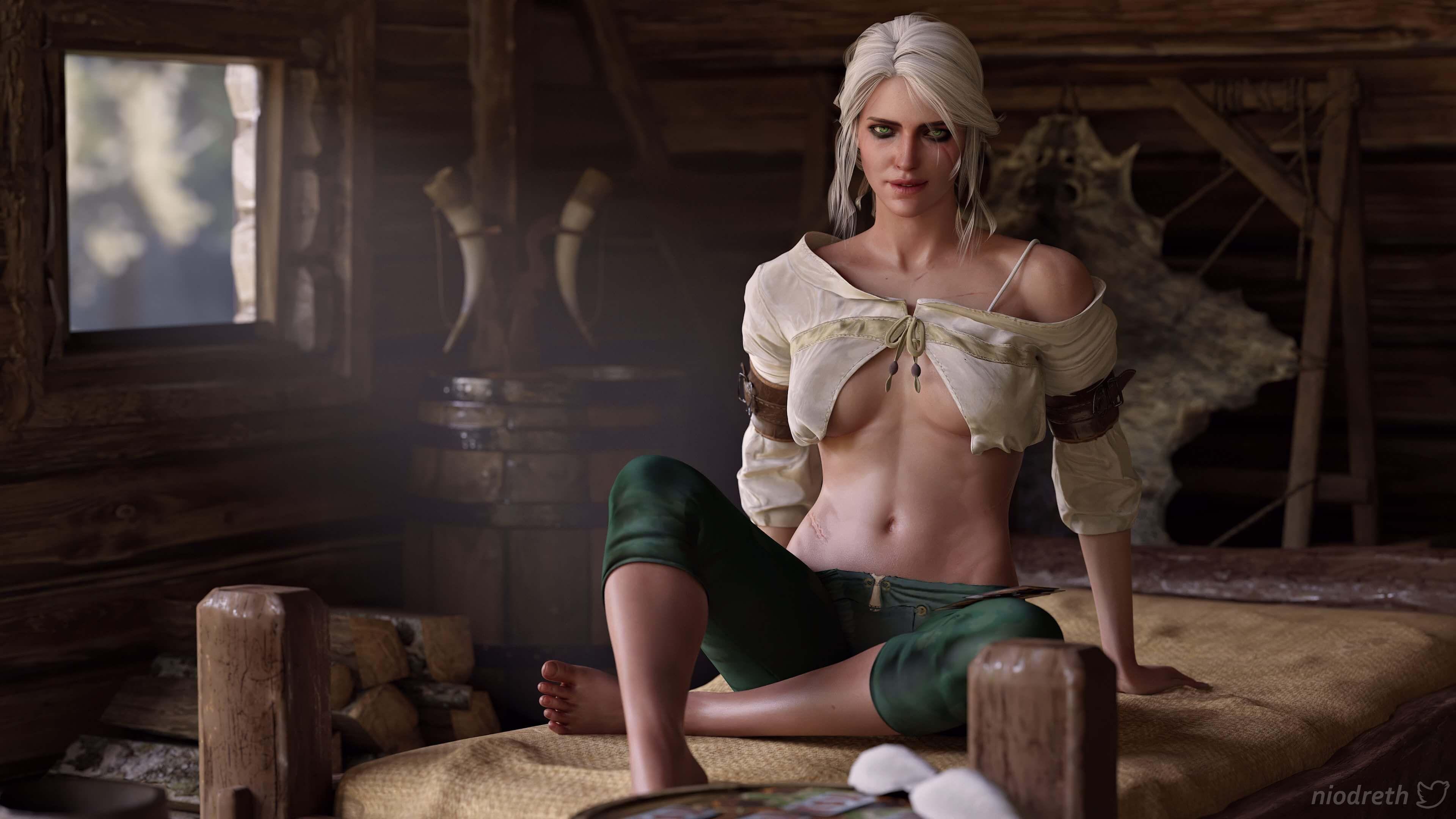 Цири вигре «Ведьмак 3: Дикая Охота». Источник: thewitcher.com