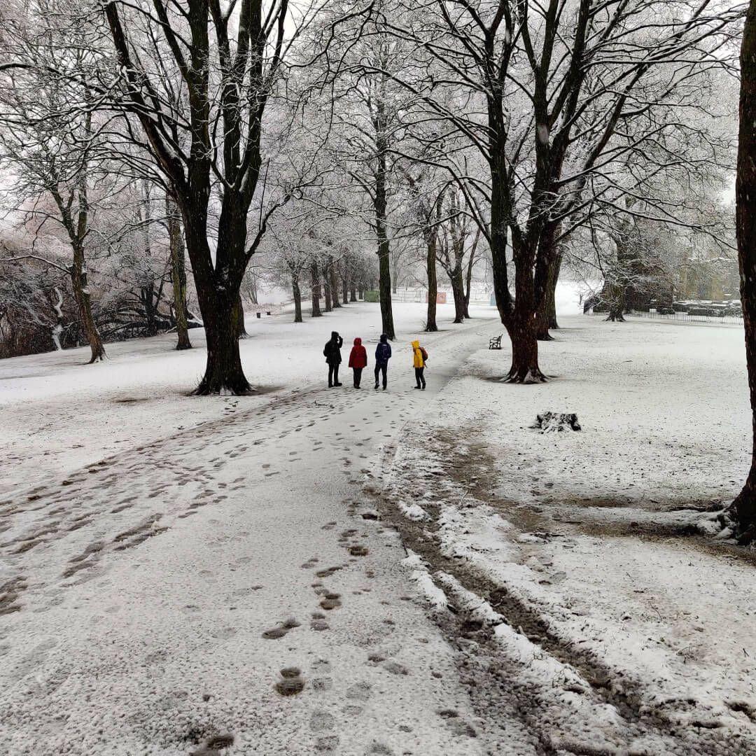 Walking through Kirkstall Abbey in Winter