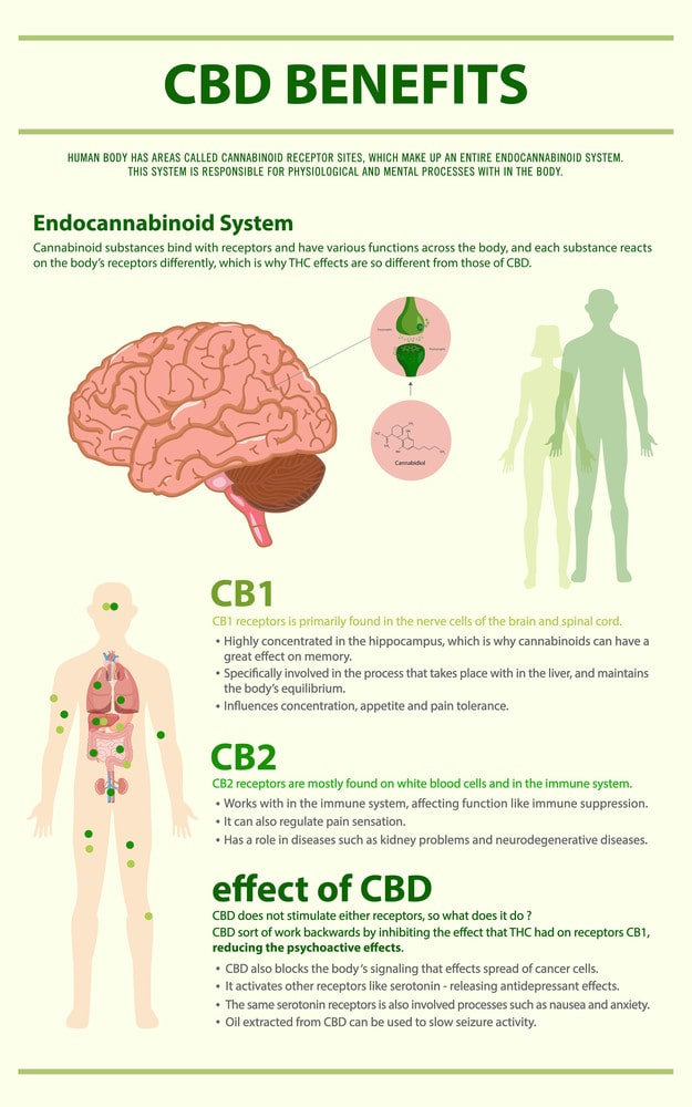 Benefits and Effects of CBD