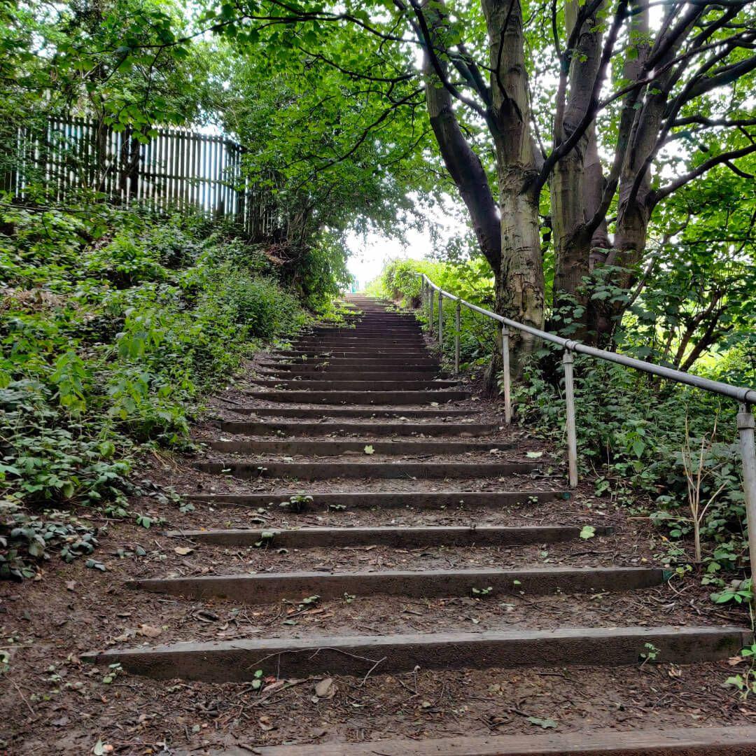 Sugarwell Hill Park steps