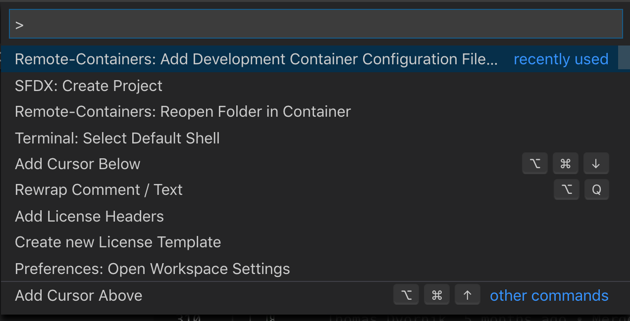 Add Dev Container Config Files