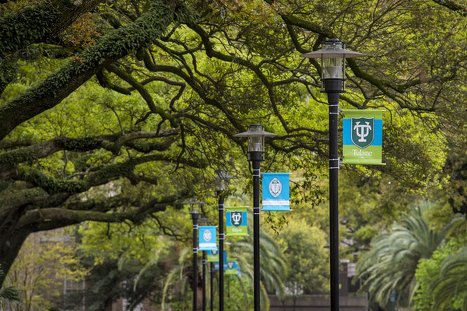 Trees and lamps. On each lamp there is a flag from Tulane University