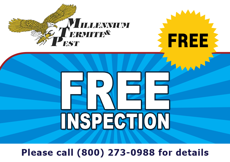 Free Termite Inspection, Call (916) 362-4400 For Details