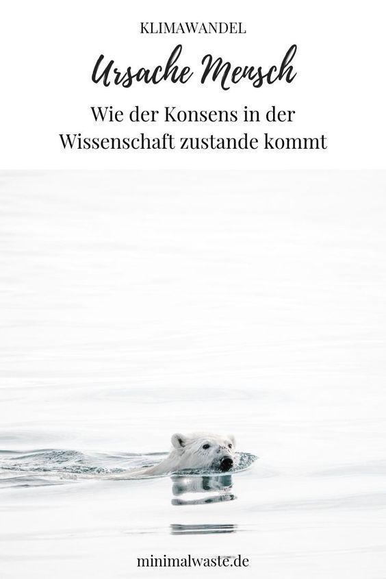Pinterest Cover zu 'Die Ursache des Klimawandels ist der Mensch'