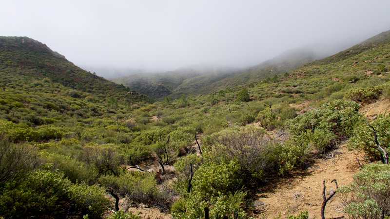 More clouds over Anza-Borrego Desert State Park