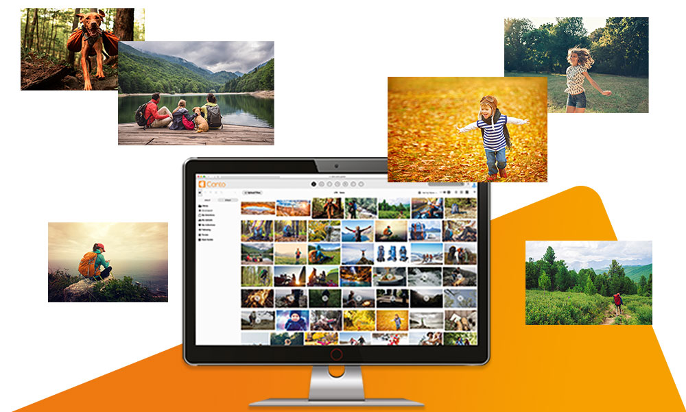 Image Library Software