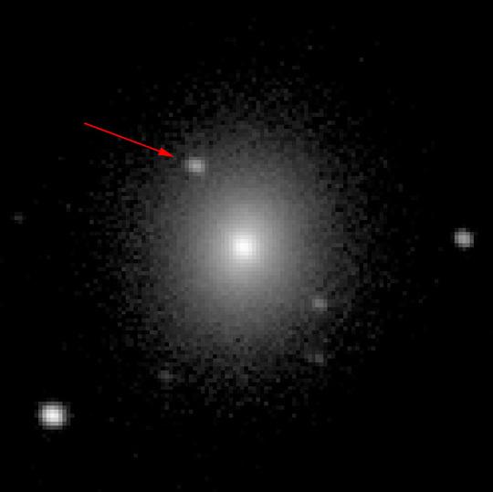stars/media/sss17a-discovery-label-607daa831ec54abb4007b325d9569d7fdbc31257266efb971b25a9418e7990a6.jpg