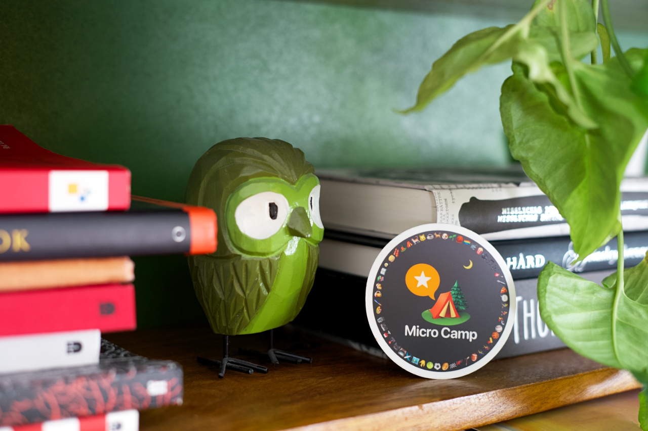 A bookshelf filled with books and decorated with a green plant and a wooden owl. Center-stage is a round sticker branded with the Micro.blog logotype and the text Micro Camp. It's filled with emojis along its circumference.