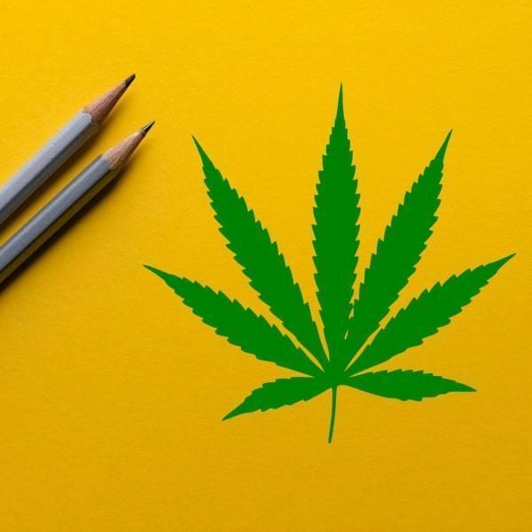 Cannabis Education, Courses and Training Articles