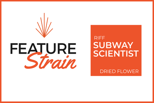 Subway Scientist Strain (Dried Flower)