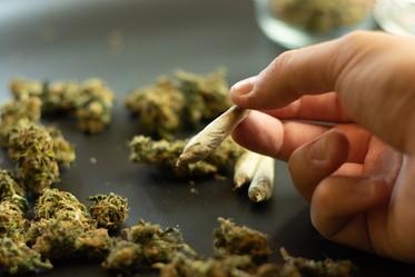 NJ Has Dismissed 88K Marijuana Cases Under New Law