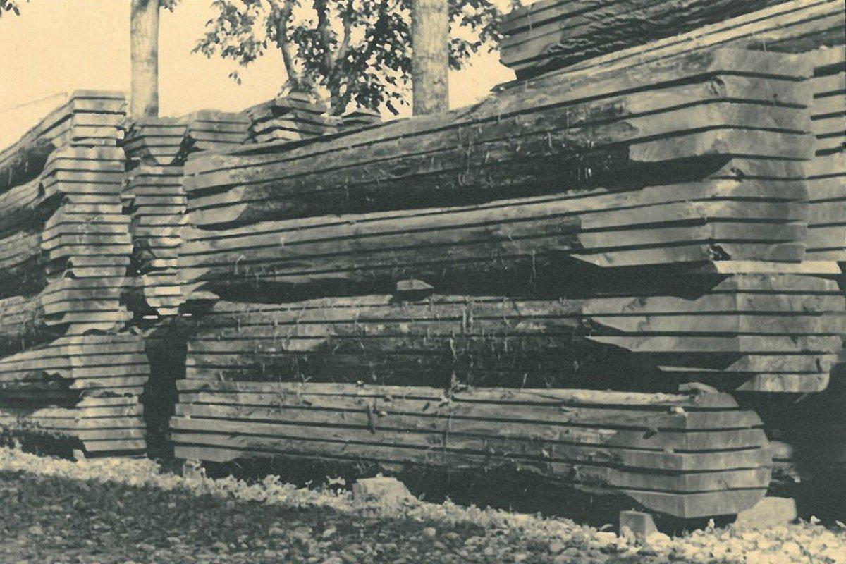 tronchi segati dall'archivio storico Galimberti