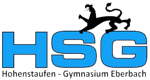 HSG Eberbach company logo