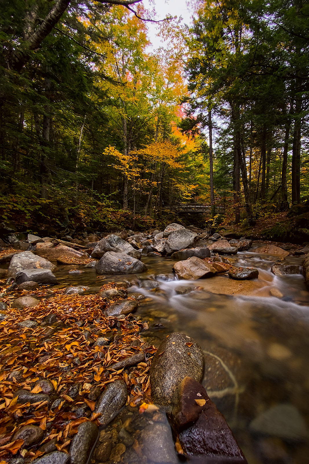 Fall Foliage in Franconia Notch